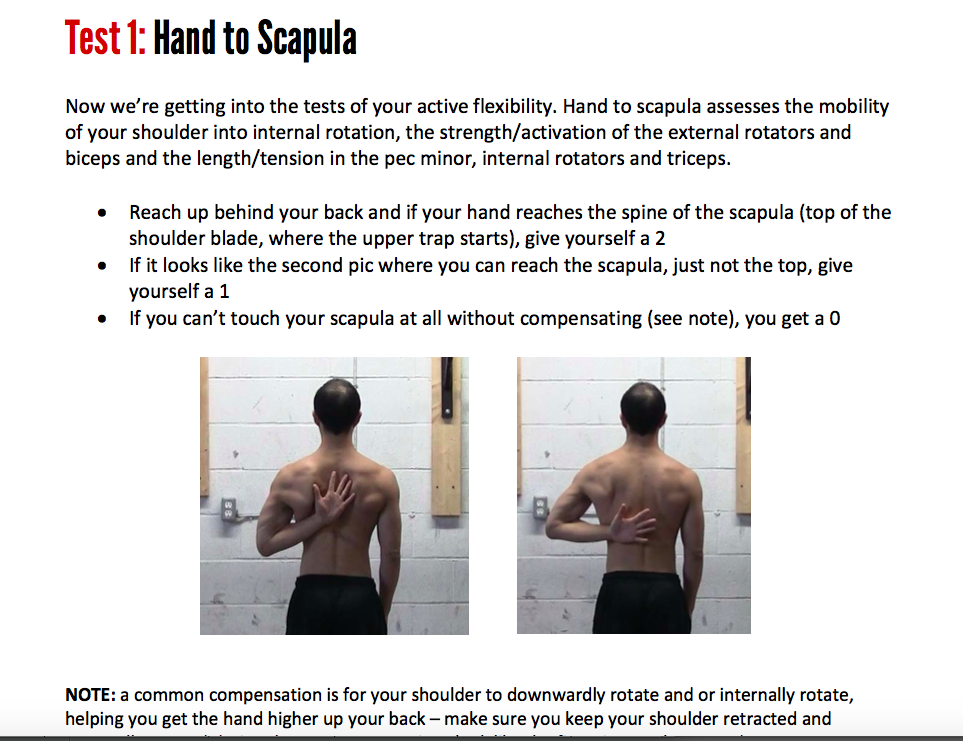 Shoulder Flexibility Solution Review | Beyond Grappling